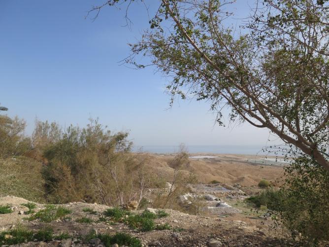 Israel 425