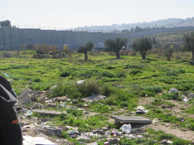 Israel 556