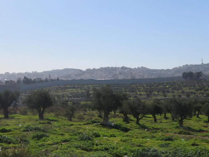 Israel 557